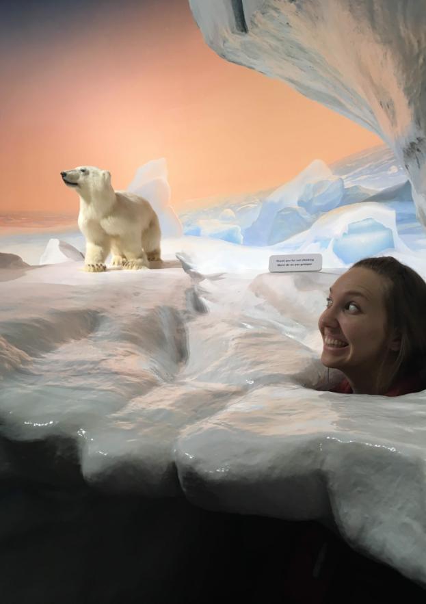 Ottawa Nature Museum